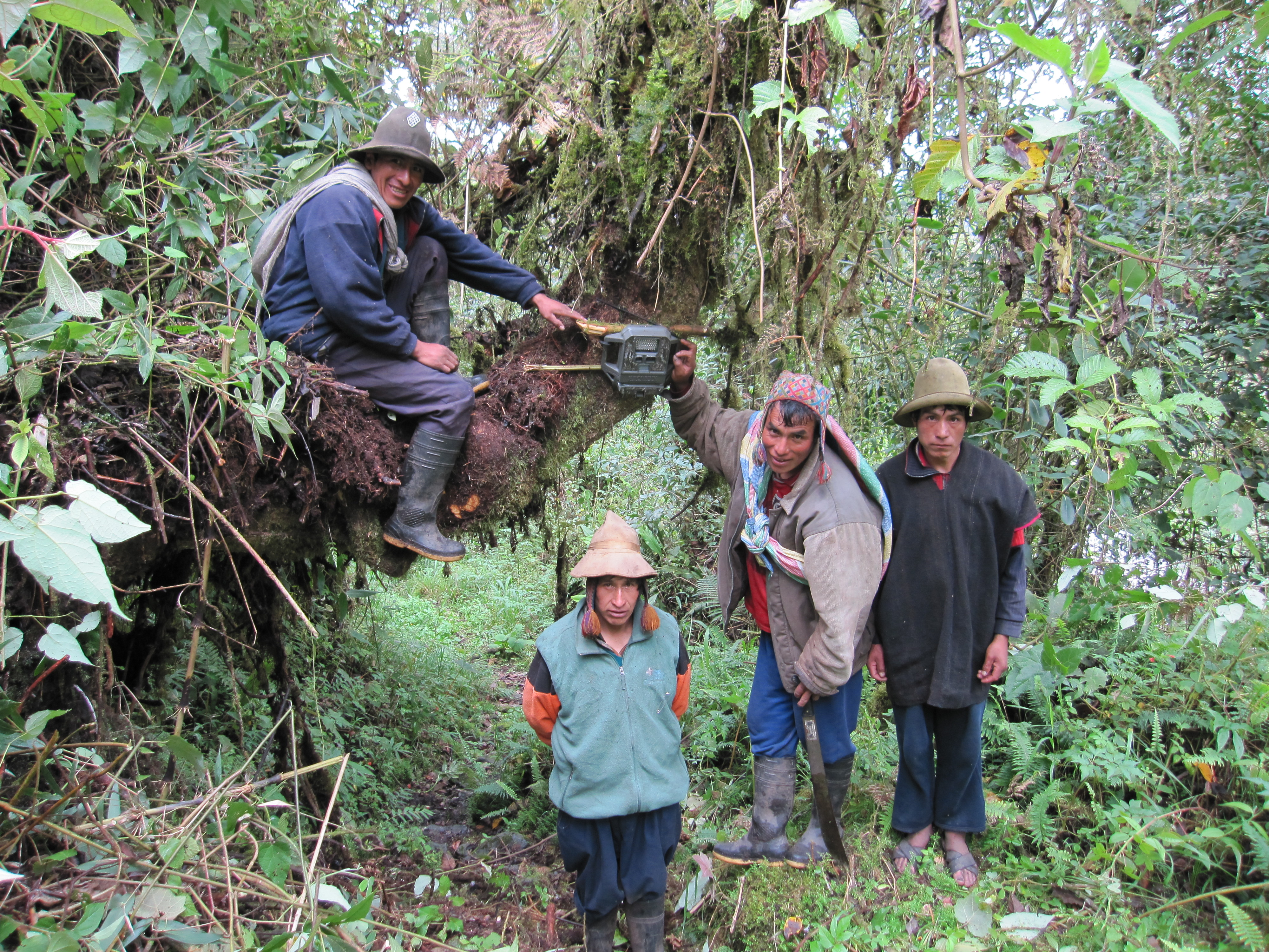 A group of highland Queros installing a camera trap.