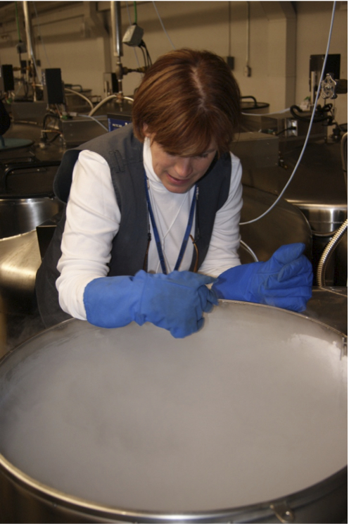 This is Dr. Christina Walters, head of seed research at the National Laboratory for Genetic Resources Preservation. Many species (like oaks) have seeds that cannot be frozen. Cryopreservation in liquid nitrogen (shown) is another option.