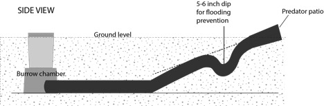 Figure 4. A side-view diagram of an artificial burrow.