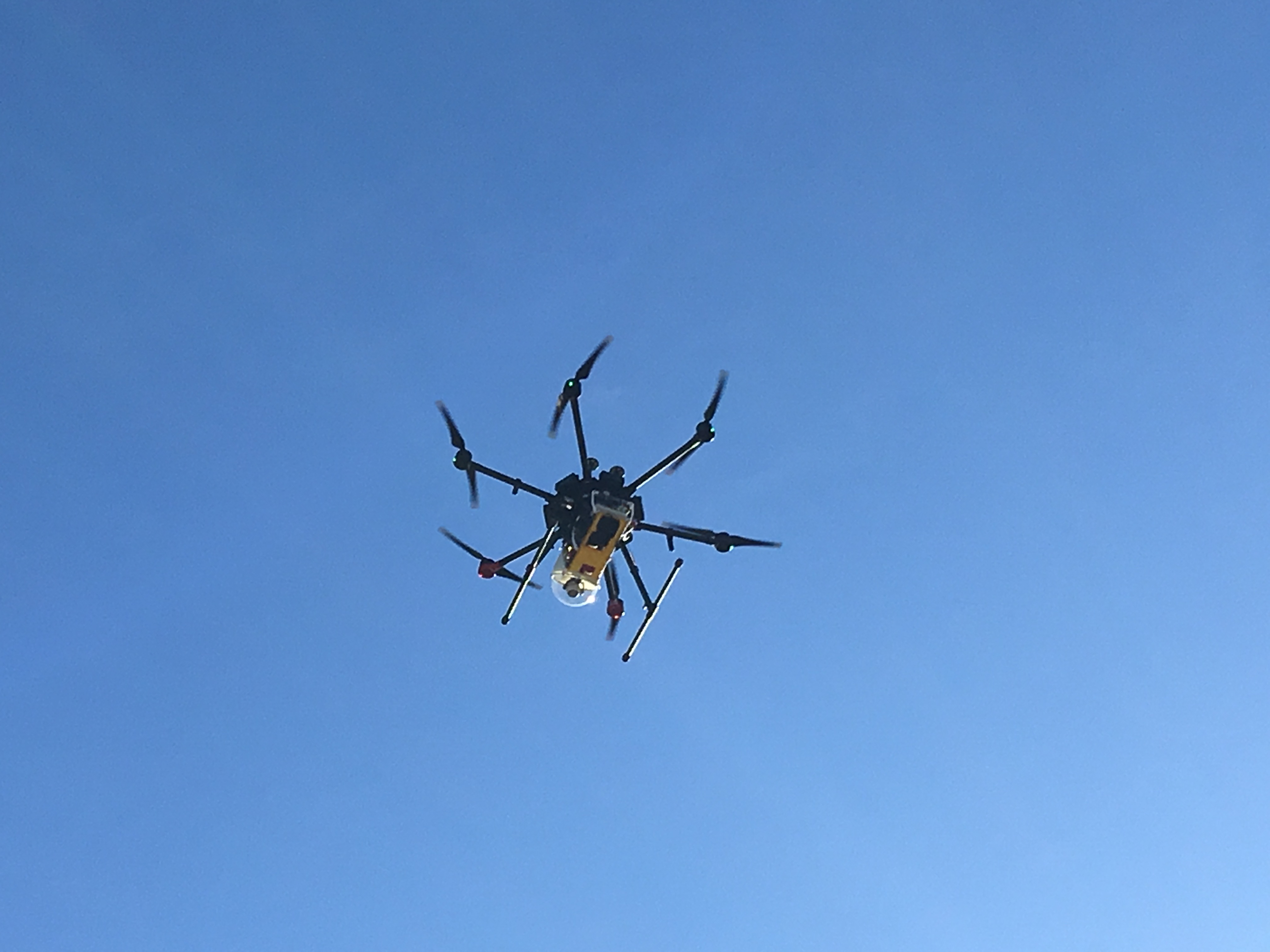 Test flight at the Biodiversity Reserve for hexacopter and sensor package.