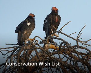 Conservation Wish List