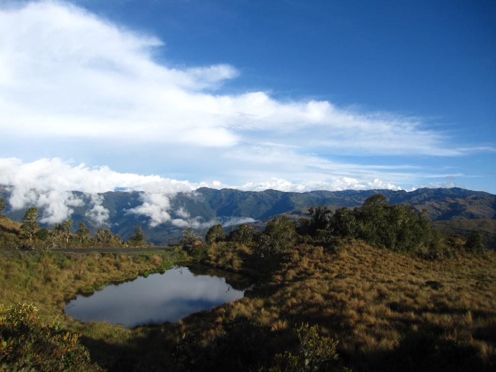 There are some seasonal water sources in the Manu landscape but it's a good idea to enjoy the scenery while you can!