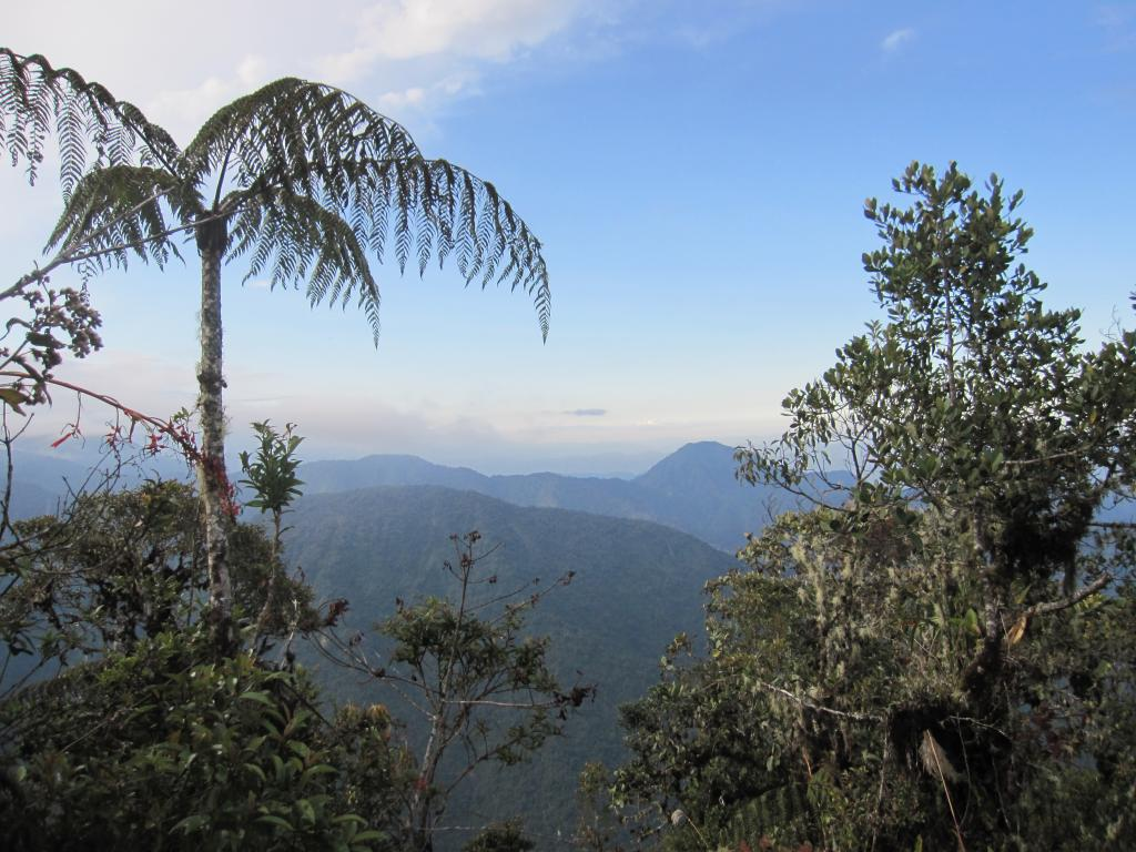 Although the forests slope generally down 3000m to the Amazonian rainforest, it's not a smooth decline.