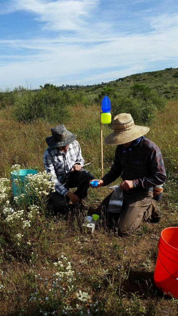 Researchers collect samples from the area.