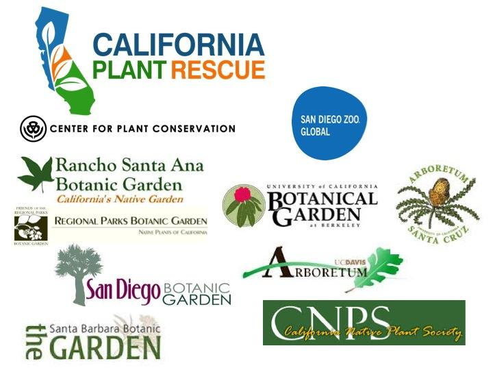 CaPR is a collaboration among many of the botanical gardens, seed banks, and organizations throughout the state, and is organized and funded in part through efforts of the Center for Plant Conservation (CPC).