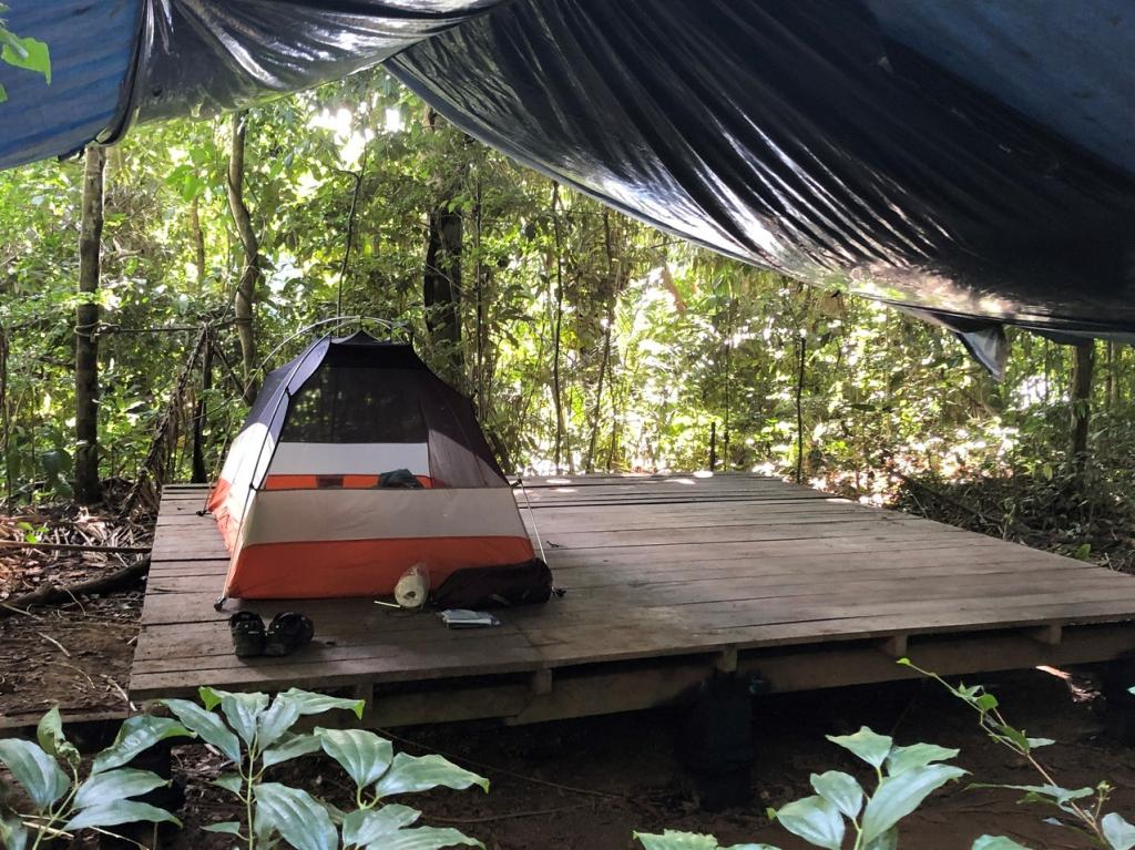 Our sleeping quarters: a small tent on a wooden platform under a tarp makes for a private comfy way to experience the rainforest at night.