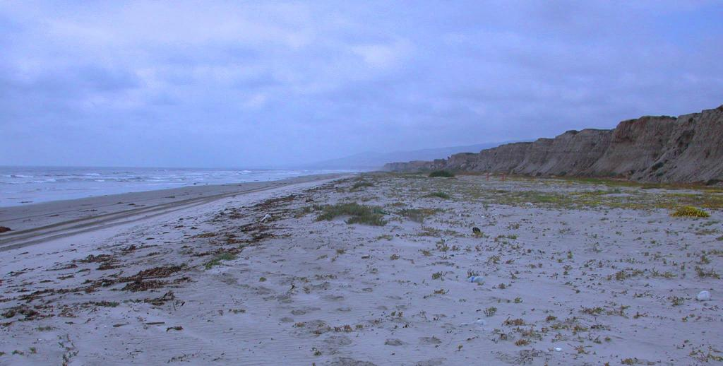 Undisturbed beaches are critical breeding habitat for some of California's most endangered species (Photo: B. Foster; courtesy of Marine Corps Base Camp Pendleton).