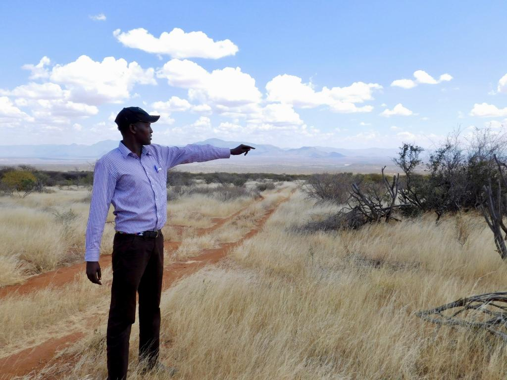 Chris Lekupe, Manager of Westgate Conservancy  shows the re-seeded areas.