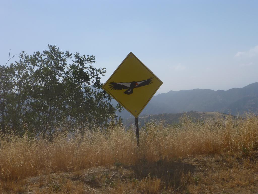 Entering California condor territory!