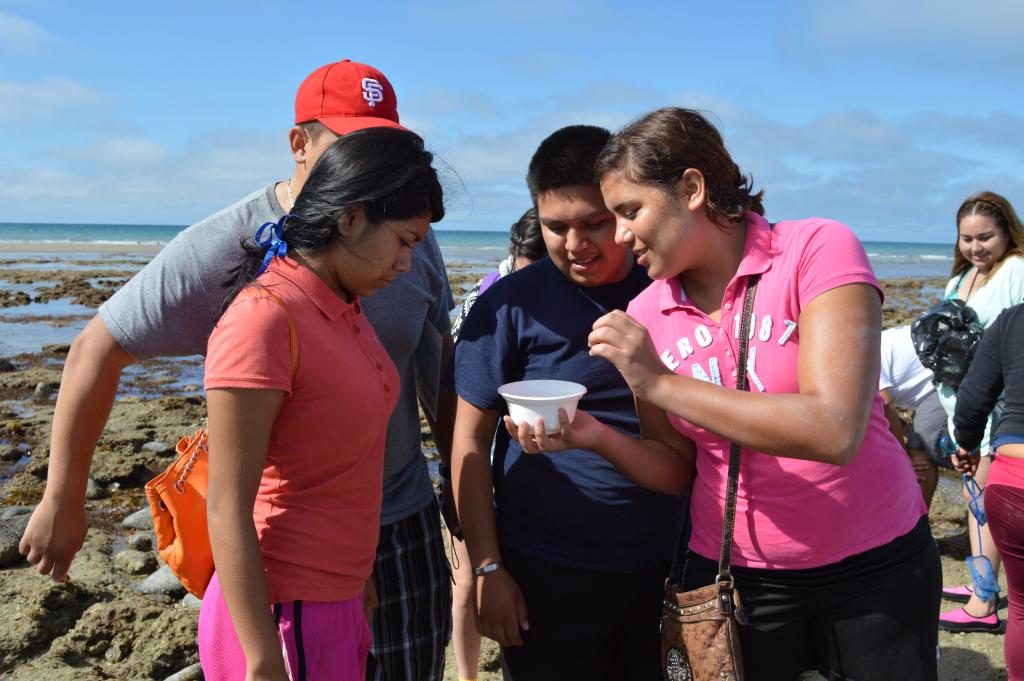 High school students from San Felipe traveled to Puerto Penasco to participate in the environmental competition awards ceremony, and were treated to guided tide pooling on the beach in front of CEDO.