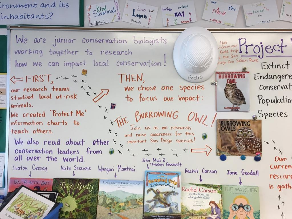Back in the classroom, teachers and students create a plan to help burrowing owls in San Diego.