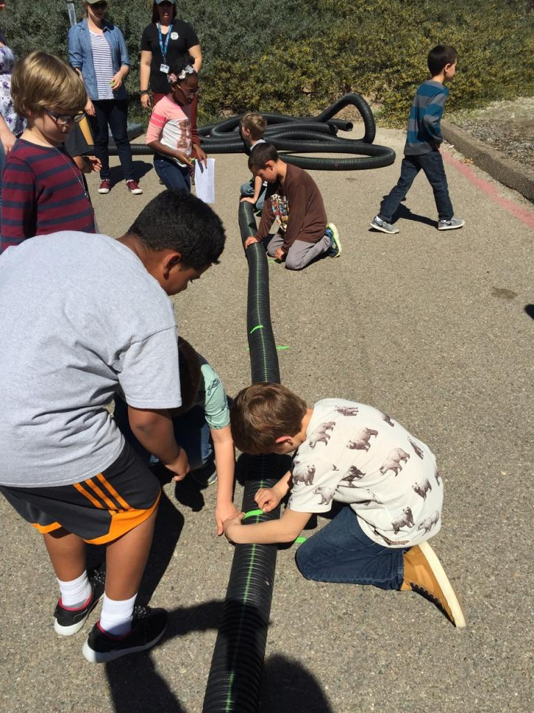 Kids and parents help measure out lengths of tubing that will be cut to size for artificial burrows.