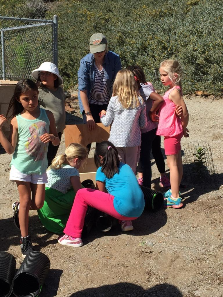 The kids figure out how all the individual pieces of the artificial burrow fit together.