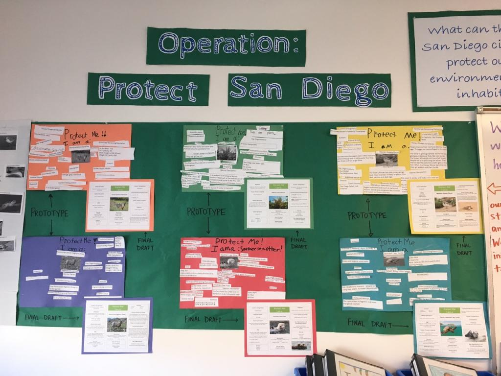 """Protect Me"" information charts are created to teach others about the native species in San Diego.All photos approved and sent by Janice Swaisgood."