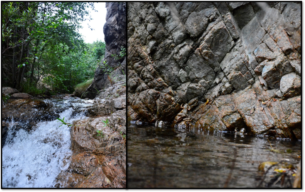 On the left: fast-flowing stream environment that's typical of many reintroduction sites; On the right: Rock wall at one of the reintroduction sites. (Photo credit: Andrew Benson)