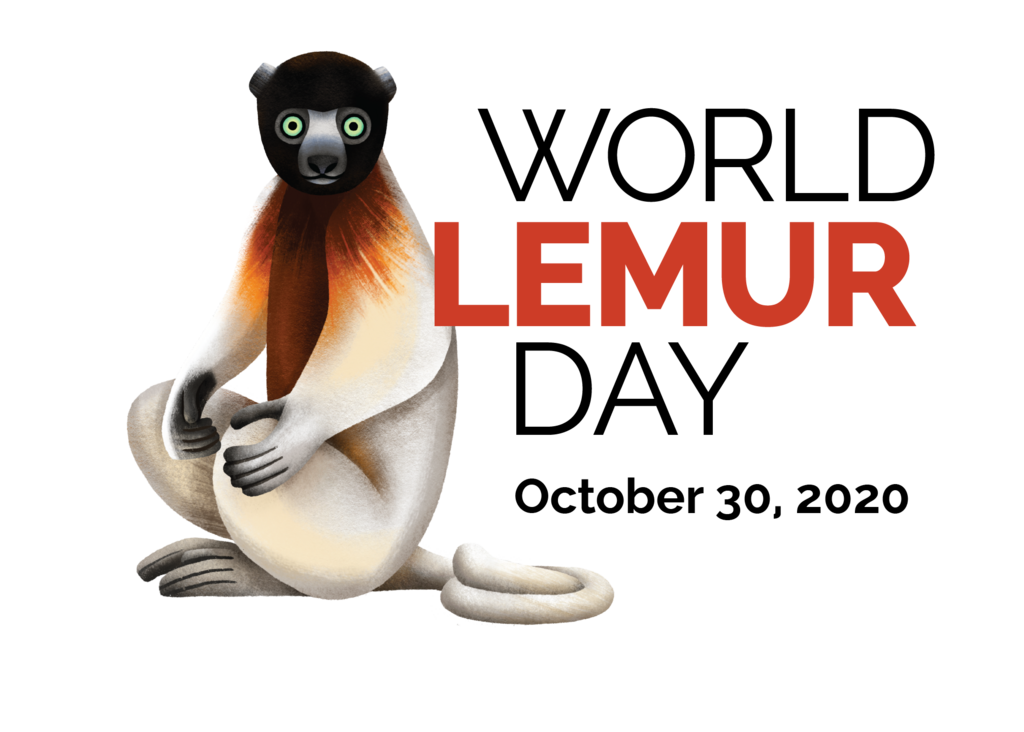 Official logo for World Lemur Day 2020. Depicted is a crowned sifaka (Propithecus coronatus), a Critically Endangered lemur from western-central Madagascar. Illustration courtesy of Caitlin Hansen and the Lemur Conservation Network.