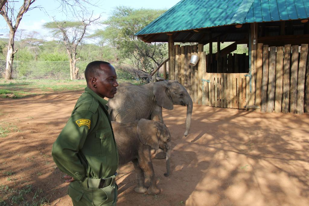 The orphans are looked after and nurtured by staff.