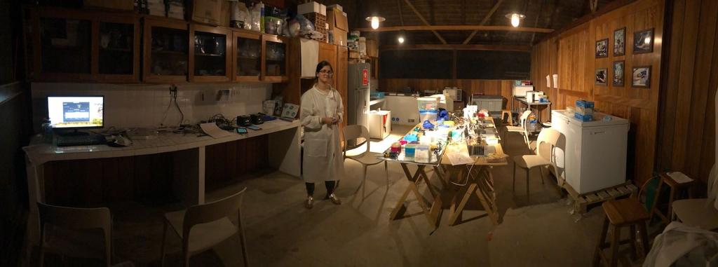 Mrinalini Erkenswick Watsa at the Green Lab, a field genomics lab at the Inkaterra Guides Field Station in the Peruvian Amazon, 2018. Photo Credit: Field Projects International