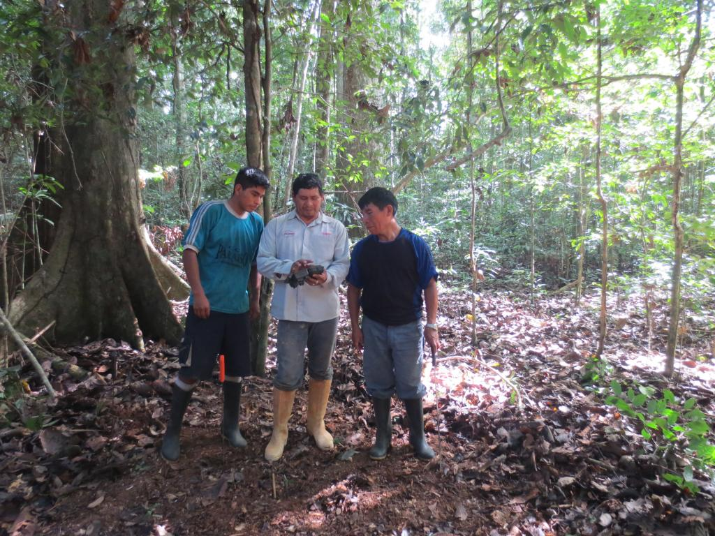 Juan Racua explains local Brazil nut harvesters how a camera trap works.