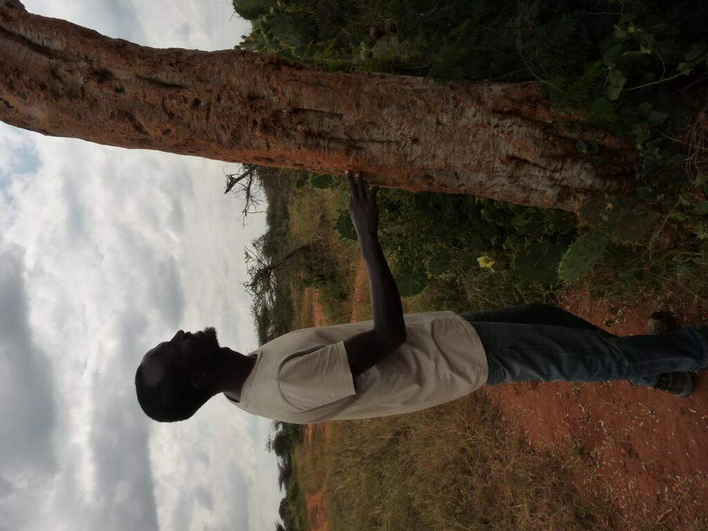 Project Coordinator Lenguya Laiyon checks a Boscia tree for claw marks that would indicate leopard activity.