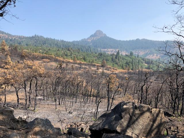 Post-burn conditions in the Cascade-Siskiyou National Monument.