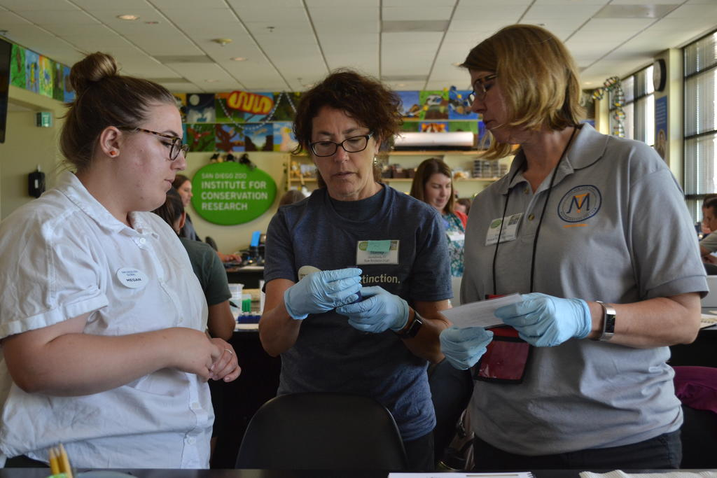 AIP student, Megan Ziegler, works with formal classroom teachers to apply what they are learning about conservation science to their classrooms.