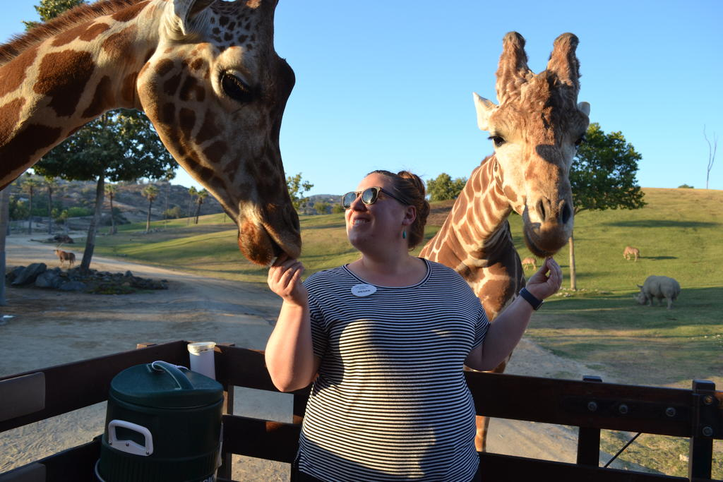 AIP student, Megan Ziegler, on a San Diego Zoo Safari Park Caravan Safari with teachers from the 2019 Teacher Workshop in Conservation Science cohort.