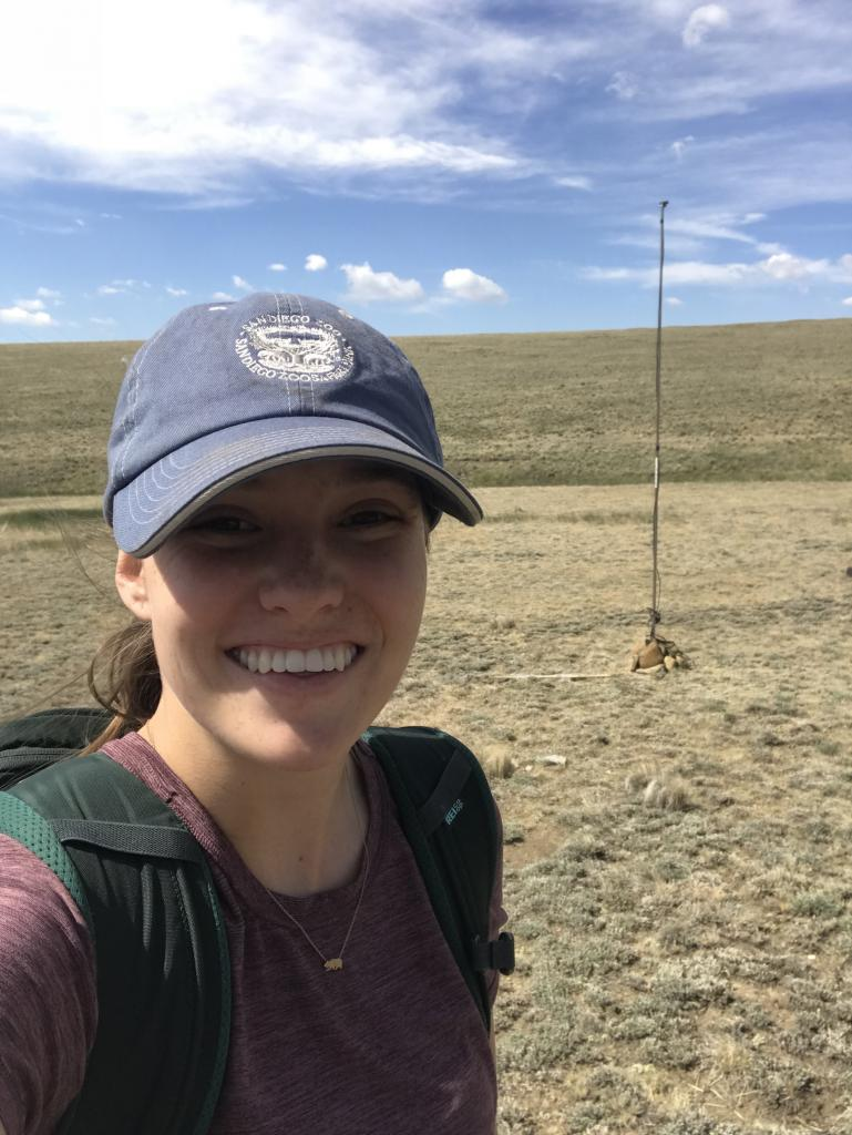 """Myself, with a bat monitor installed in Fairplay, Colorado. The acoustics receiver is mounted on top of a pole to limit acoustic """"clutter"""" from trees, shrubs, and anything else that isn't coming from a bat."""