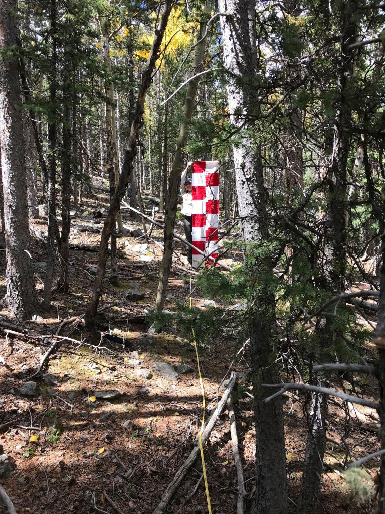 """We use a horizontal coverboard, the red and white checkered tool pictured above, to estimate the amount of """"cover"""" an area has. The less of the red and white that you can see means that there is more """"cover"""" from grasses, forbs, shrubs, and trees for snowshoe hares to hide from Canada lynx."""