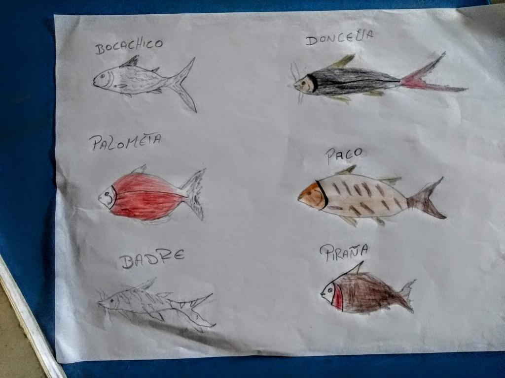 Drawings and names of fish as workshop materials on aquatic ecosystems. (Photo by Berenice Mendoza)