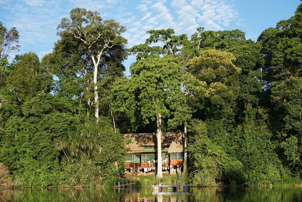 Cocha Cashu Biological Station, Manu National Park, Peru.