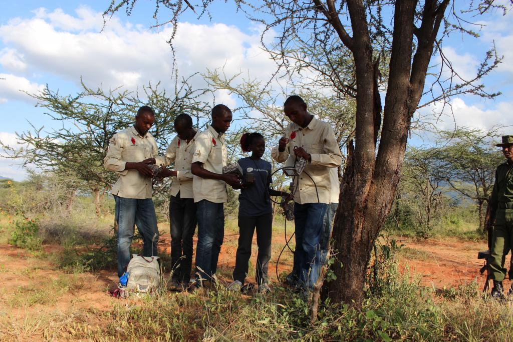 Twiga Walinzi team installing a field camera.