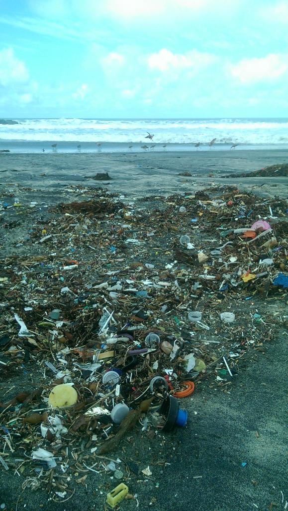 Example of washed-up trash on Silver Strand beach prior to clean-up, and the hidden pollution that beach users may rarely see (Photo by Katrina Murbӧck, courtesy of Naval Base Coronado).