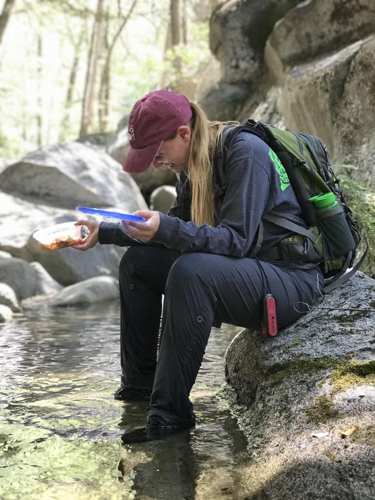 Summer fellow Bailey Mccormick releasing mountain yellow-legged frogs back into the wild.