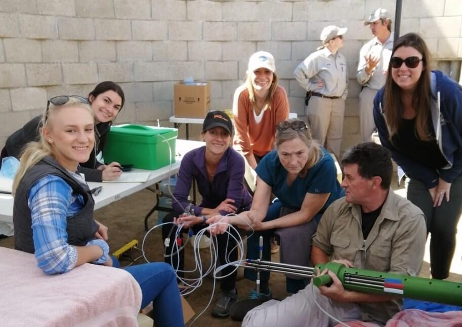 During a rhino OPU procedure in March of 2020. Listed from left to right: Carla Herbst (Embryo Plus, S Africa), Hannah McPherson (SDZG-ICR), Parker Pennington (author, SDZG-ICR), Elena Ruggeri (SDZG-ICR), Barbara Durrant (SDZG-ICR), Morné de la Rey (Embryo Plus, S Africa), and Carly Young (SDZG-ICR).