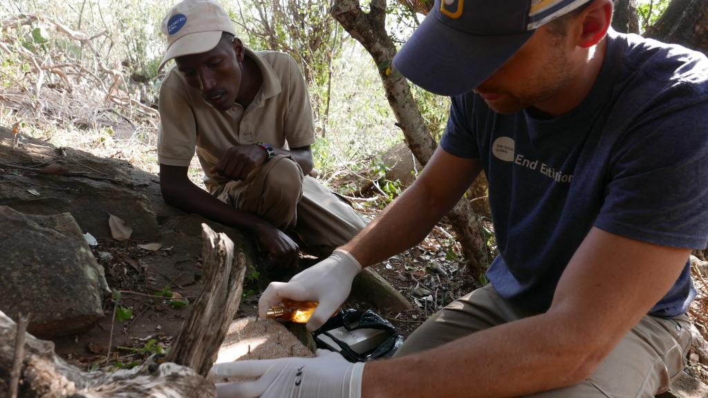 Dr. Nicholas Pilfold applies cologne to a scent pad, while Kenyan field assistant Ambrose Letoluai learns the method of application. Scent pads are also adorned with hair snares, to capture DNA from leopards that decide to rub.  © Megan Owen